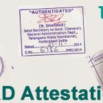 HRD attestation Services – Choose professionals for hassle-free procedure!